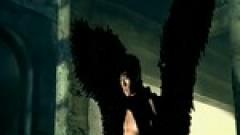 黑色翅膀 / Đôi Cánh Màu Đen