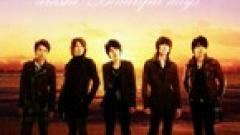 Beautiful Days - Arashi