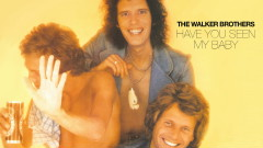 Have You Seen My Baby (Official Audio) - The Walker Brothers