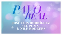 Pavo Real (Audio) - José Luis Rodriguez, Nile Rodgers