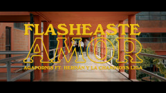 Flasheaste Amor (Official Video) - Agapornis, Hernan y La Champion's Liga, Lauro