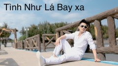 Tình Như Lá Bay Xa - Nguyễn Ngọc Sơn
