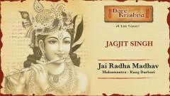 Jai Radha Madhav - Mahamantra - Hare Krishna...Raag Darbari (Live) (Pseudo Video) - Jagjit Singh