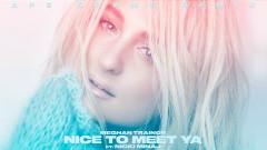 Nice to Meet Ya (Ape Drums Remix - Audio) - Meghan Trainor, Nicki Minaj