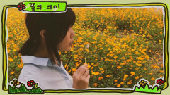Meaning Of The Flower - Sujin