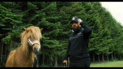 600 Heste - RH