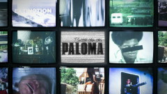 Better Than This (Lyric Video) - Paloma Faith