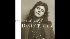 If I Could (Official Audio) - David Essex