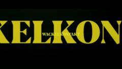 Wackelkontakt - Credibil