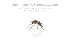 Sleep Apnea (Acoustic Version - Audio) - Chevelle