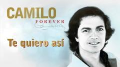 Te Quiero Así (Cover Audio) - Camilo Sesto