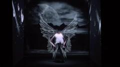 Still Feather - Kan Wakan