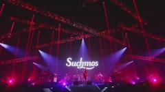 YMM (Live at YOKOHAMA ARENA 2018.11.25) - Suchmos