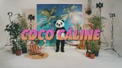Coco Câline (Clip officiel) - Julien Doré