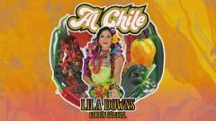 La Cumbia del Mole (Cover Audio) - Lila Downs
