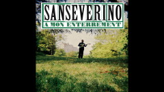 À mon enterrement (Audio) - Sanseverino