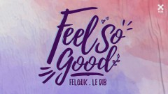 Feel So Good (Pseudo Video) - Felguk, Le Dib