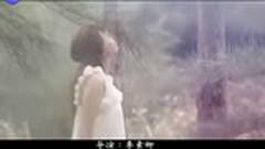 明月/ Ánh Trăng - Trác Y Đình
