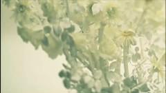 If - Nishino Kana