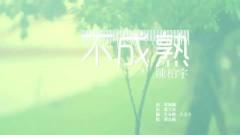 不成熟 / Không Chững Chạc - Trần Bách Vũ