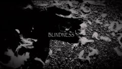 BLINDNESS - And