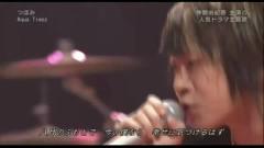 Tsubomi (live) - Aqua Timez