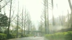 Jeukheungyeoncha (즉흥연차)