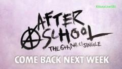 Interview (130609 Inkiagyo) - After School