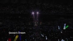 Dream Of Goose (Live) - PSY