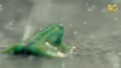 Walking In The Rain (Vietsub) - Verbal Jint