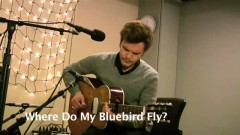 Where Do My Bluebird Fly (Live On KEXP) - The Tallest Man On Earth