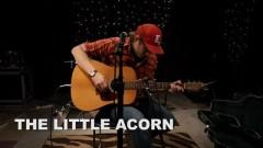 The Little Acorn (Live On KEXP) - Fruit Bats