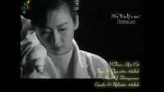 相思风雨中/ Tương Tư Trong Mưa Gió (Vietsub) - Trương Học Hữu, Thang Bảo Như