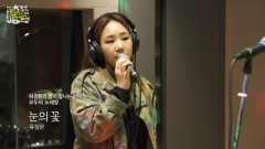 Snow Flower (150403 MBC Radio)
