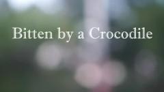 Dream Of Being Bitten By A Crocodile