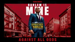 Against All Odds (Audio) - Godfather of Harlem, Sean Cross