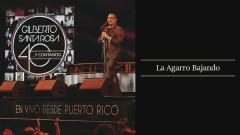 La Agarro Bajando (En Vivo - Audio)