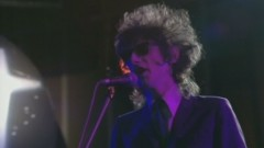Beasley Street (Old Grey Whistle Test, 1980) - John Cooper Clarke