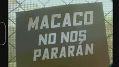 No Nos Pararán (Lyric Video) - Macaco