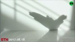 Shadowgraph - AquiBird