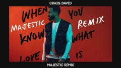 When You Know What Love Is (Majestic Remix) [Audio] - Craig David