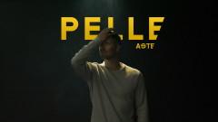 Pelle (Audio) - Aste