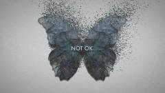 Not Ok (Lyric Video)