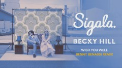 Wish You Well (Benny Benassi Remix) [Audio] - Sigala, Becky Hill