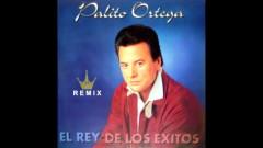 La Felicidad (Versíon Dos) [Remix '97] (Official Audio) - Palito Ortega