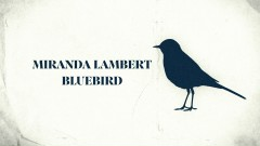 Bluebird (Lyric Video) - Miranda Lambert