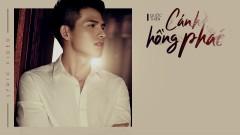 Cánh Hồng Phai (Cover) - Quốc Thiên