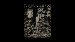 Long Violent History (Audio) - Tyler Childers