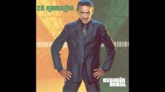 Cantiga Do Sapo (Pseudo Video) - Zé Ramalho