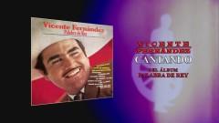 Cantando (Cover Audio) - Vicente Fernández